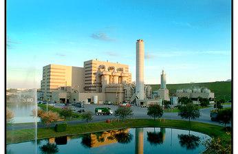 Энергия из ничего: топ-5 компаний, перерабатывающих отходы