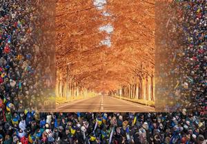 Бесконечно длящаяся «последняя осень»